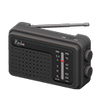 Picture of Portable Radio